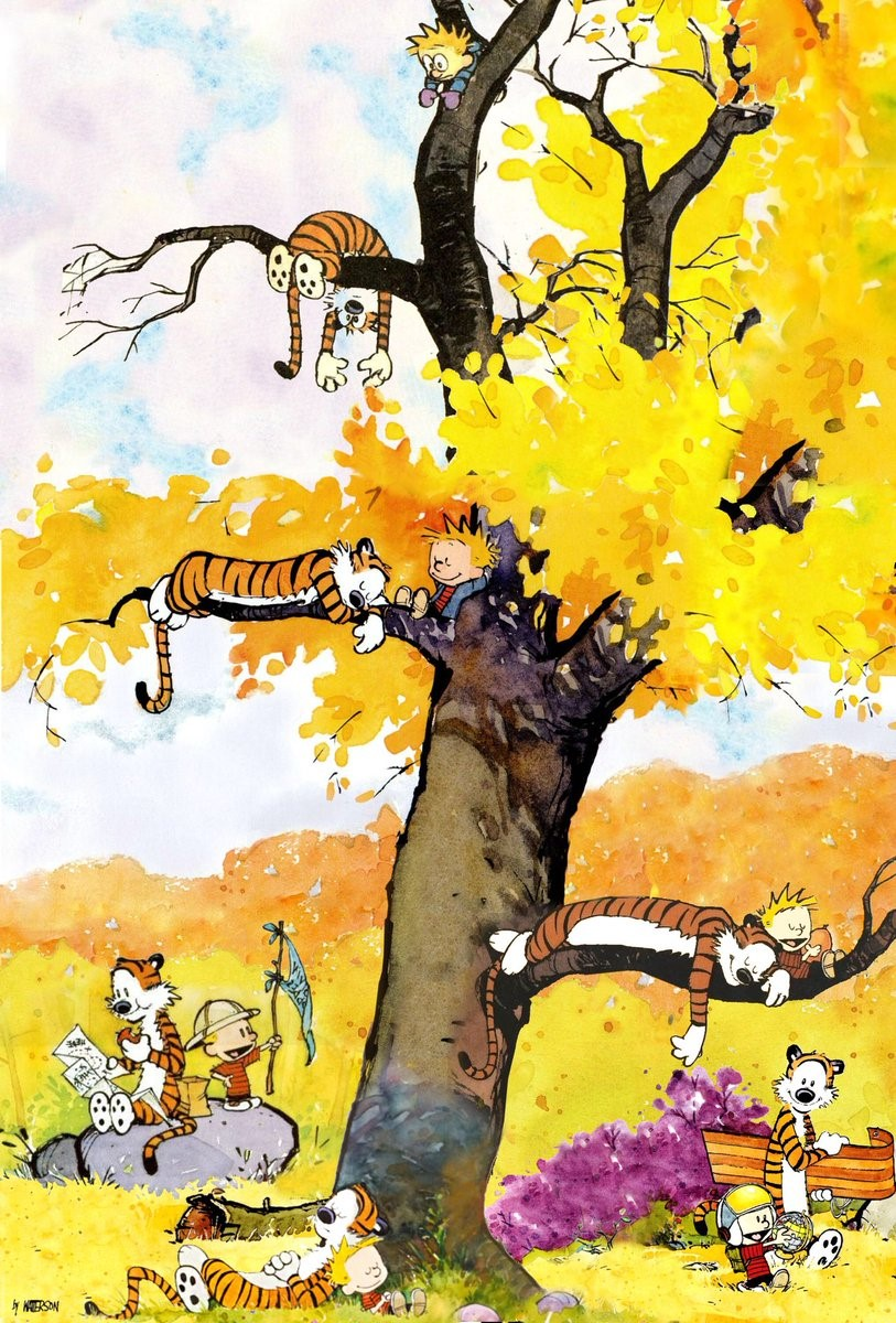 Calvin and Hobbes Summer